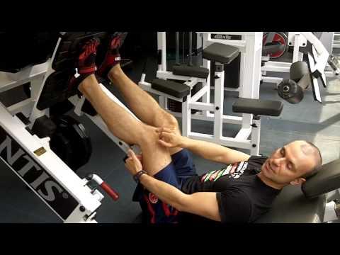 Penis cest le muscle