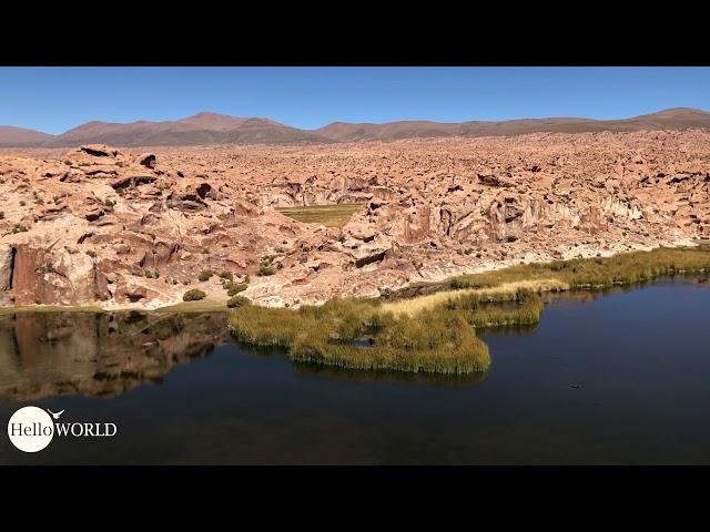 Abenteuer 100 Tage Südamerika: Im Blick die Laguna Negra Bolivien