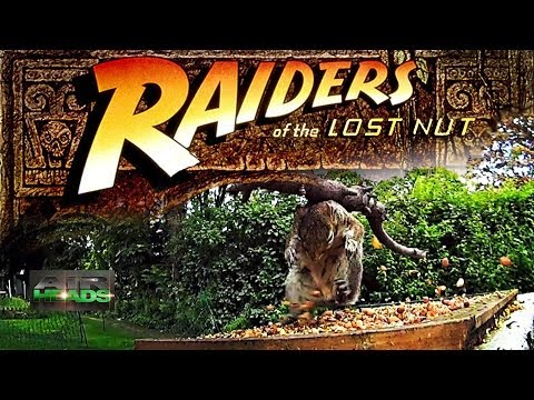 AirHeads – Raiders of the Lost Nut
