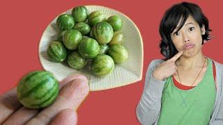 TZIMBALO MELON – mini watermelon the size of a grape?! | Fruity Fruits Taste Test