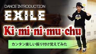 EXILE「Ki・mi・ni・mu・chu」のダンスが今年一番覚えやすかったドン【サビの振り付け】