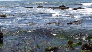preview picture of video 'Pacific Ocean Coast Tidal pools at Crystal Cove'
