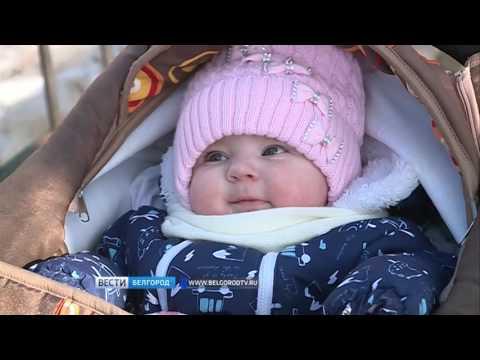 ГТРК Белгород - Программе господдержки «Материнский капитал» – 10 лет