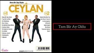 Ceylan - Tam Bir Ay Oldu - 2014