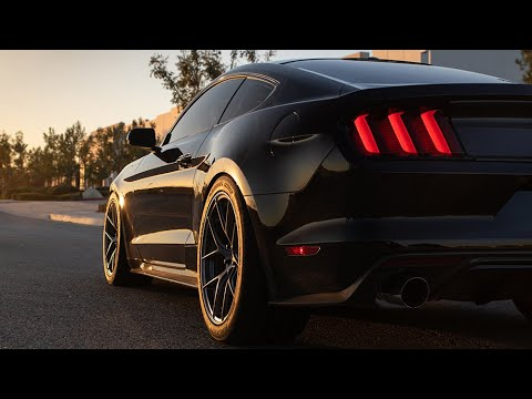 Pedders Ford Musang S550 Performance Suspension