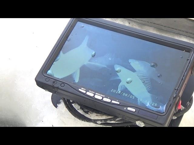 Видео ЯЗЬ-52