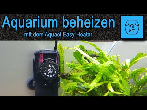 Aquarium beheizen mit dem Aquael Easy Heater - Unboxing Aquarium Heizstab - Becken Heizer - deutsch