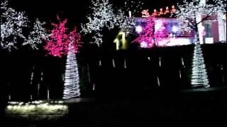 Its Christmas Light Season.