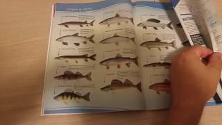Рыбалка в канаде правила