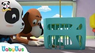 Help! Someone Stole Baby Panda's Mooncakes   Kids Cartoon   Panda Cartoon   BabyBus