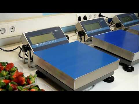 GISCALE Un software para Gestión de peso en PC