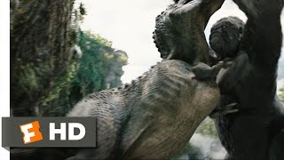 King Kong movie clips: http://j.mp/1uxK9LN BUY THE MOVIE: http://bit.ly/2mVbY1J Don't miss the HOTTEST NEW TRAILERS: http://bit.ly/1u2y6pr  CLIP DESCRIPTION: When Ann (Naomi Watts) is trapped by a T-Rex, Kong leaps in and saves her, killing the T-Rex.  FILM DESCRIPTION: One of the greatest adventure stories in Hollywood history gets a new interpretation in this action drama from Academy Award-winning director Peter Jackson. In the early 1930s, Carl Denham (Jack Black) is a daring filmmaker and adventurer who has gained a reputation for his pictures documenting wildlife in remote and dangerous jungle lands; despite the objections of his backers, Denham plans to film his next project aboard an ocean vessel en route to Skull Island, an uncharted island he discovered on a rare map. Correctly assuming his cast and crew would be wary of such a journey, Denham has told them they're traveling to Singapore, but before they set sail, his leading lady drops out of the project. Needing a beautiful actress willing to take a risk, Denham finds Ann Darrow (Naomi Watts), a beautiful but down-on-her-luck vaudeville performer, and offers her the role; cautious but eager to work, Darrow takes the role, and onboard the ship she strikes up a romance with Jack Driscoll (Adrien Brody), a respected playwright hired by Denham to write the script for his latest epic.When Denham and company arrive on Skull Island, the natives react with savage violence, but they happen to be the least of their worries. Skull Island is a sanctuary for prehistoric life, and lording it over the dinosaurs and other giant beasts is Kong, a 25-foot-tall gorilla who can outfight any creature on Earth. The natives kidnap Darrow, giving her to Kong as an offering to appease the giant beast; Denham and his men set out to find her, with Driscoll bravely determined to save the woman he loves. Eventually, Driscoll finds Darrow and Denham outwits Kong, intending to take the giant ape back to New York for display. But Kong has bonded with Darrow, and his attraction to her proves to be his undoing. Andy Serkis, who provided the body movements for Gollum in Peter Jackson's Lord of the Rings pictures, performed similar duties on King Kong, studying gorillas so he could mimic their actions, which were then used as the basis for the special-effects crew's digital animation of the great ape.  CREDITS: TM & © Universal (2005) Cast: Andy Serkis, Naomi Watts Director: Peter Jackson Producers: Philippa Boyens, Jan Blenkin, Carolynne Cunningham, Peter Jackson, Fran Walsh, Annette Wullems Screenwriters: Merian C. Cooper, Philippa Boyens, Peter Jackson, Fran Walsh, Edgar Wallace  WHO ARE WE? The MOVIECLIPS channel is the largest collection of licensed movie clips on the web. Here you will find unforgettable moments, scenes and lines from all your favorite films. Made by movie fans, for movie fans.  SUBSCRIBE TO OUR MOVIE CHANNELS: MOVIECLIPS: http://bit.ly/1u2yaWd ComingSoon: http://bit.ly/1DVpgtR Indie & Film Festivals: http://bit.ly/1wbkfYg Hero Central: http://bit.ly/1AMUZwv Extras: http://bit.ly/1u431fr Classic Trailers: http://bit.ly/1u43jDe Pop-Up Trailers: http://bit.ly/1z7EtZR Movie News: http://bit.ly/1C3Ncd2 Movie Games: http://bit.ly/1ygDV13 Fandango: http://bit.ly/1Bl79ye Fandango FrontRunners: http://bit.ly/1CggQfC  HIT US UP: Facebook: http://on.fb.me/1y8M8ax Twitter: http://bit.ly/1ghOWmt Pinterest: http://bit.ly/14wL9De Tumblr: http://bit.ly/1vUwhH7