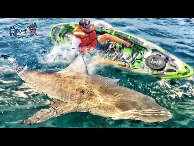 Fishing Bloopers!!! Fish Bloopers Funny Chew On This Shark Grouper 2017