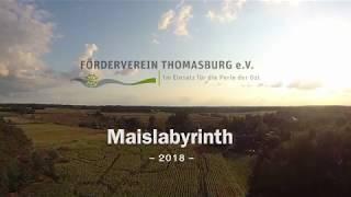 Dorf- und Kulturtage - Maislabyrinth