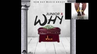 JUNIOR X - WHY (Official Audio) (FIRST WALK RIDDIM)