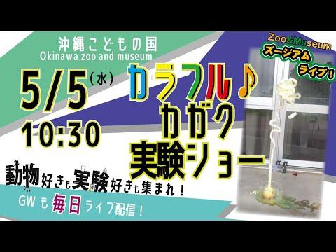 沖縄こどもの国ズージアムライブ!【カラフル♪科学実験ショー】