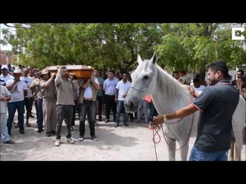 Il deposito in linea comprerà lattivatore di cavallo