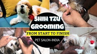 First Time Puppy Grooming From Start To Finish | How To Groom A Shih Tzu Puppy