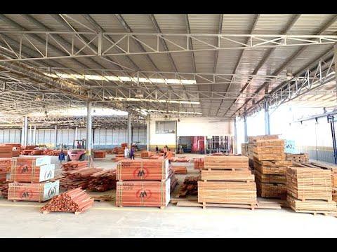 Exportação de madeira rende USD 19 milhões em três meses