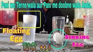 Water density floating and sinking egg and salt water  science experiment   in Hindi   Urdu