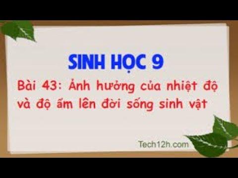 SINH HỌC 9 - BÀI 43 ẢNH HƯỞNG CỦA NHIỆT ĐỘ VÀ ĐỘ ẨM LÊN ĐỜI SỐNG SINH VẬT