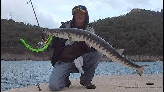 Fishing Barracuda with the Barracuda Tube... fishing Greece
