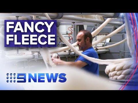 , title : 'Business brings merino wool to international fashion houses | Nine News Australia