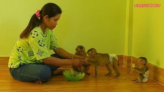 Happy Family, Brother Kako And Sister Luna With Nina Eating Banana Fruits