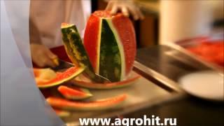 Как быстро разрезать арбуз