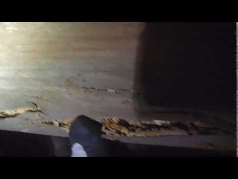 Crawl space - Home Energy