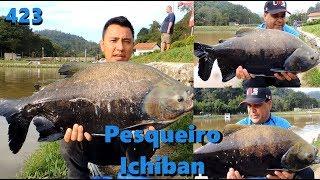 Pescaria de tambas no Ichiban - Fishingtur na TV 423