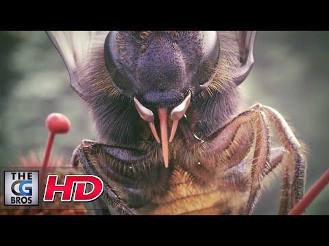 CGI & VFX Showreels: by Studio Aiko