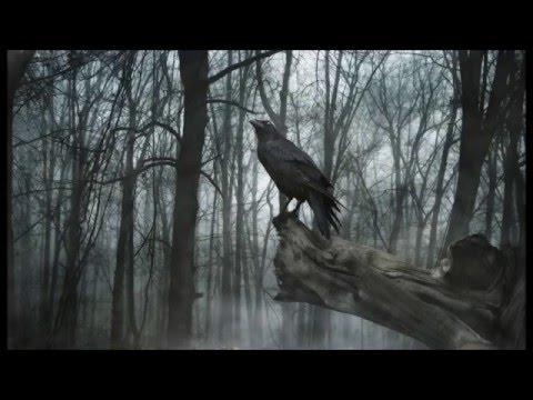 Vidéo de Juan Manuel Peñate Rodríguez