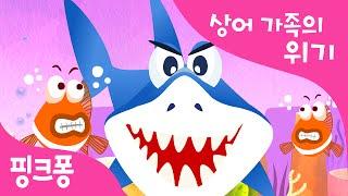 도망쳐! 상어 가족 | 동물 동요 | 핑크퐁! 인기동요