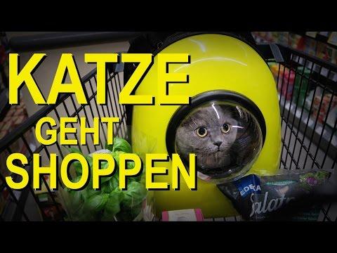 Rucksack für Katzen (REVIEW)