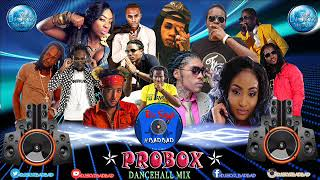 PROBOX DANCEHALL MIXTAPE#BADBAD