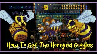 Terraria Xbox/Playstation | How To Get The Honeyed Goggles | Bee Mount