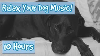 Classical Music for Dogs! Soft Music Combined with Nature Sound Effects Including Rain to Relax Dogs