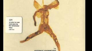 The Divine Comedy - U.S.E.