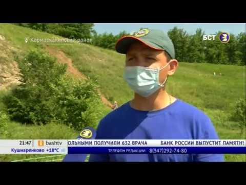 Жителям Башкирии рассказали, как отдыхать на пляжах во время пандемии