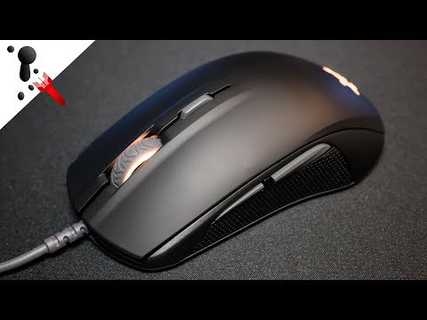 SteelSeries Rival 110 Review (VS Rival 100)