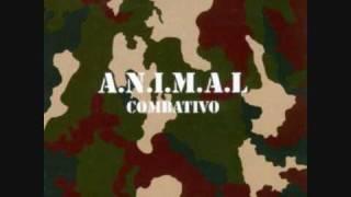 A.N.I.M.A.L - Combativo