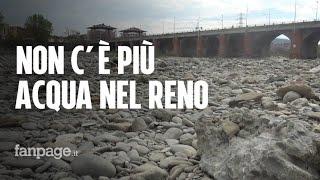 Allarme Siccità: Il Fiume Reno Non C'è Più