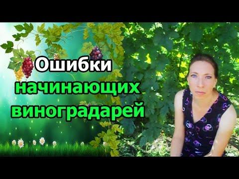 Славянский амулет радуга
