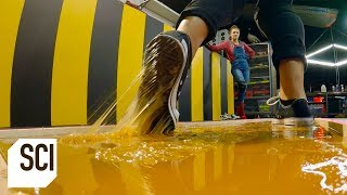 Can You Walk on Rodent Glue Without Getting Stuck?   MythBusters Jr.