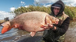 Супер рыбалка на сазана осенью