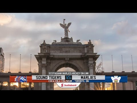 Sound Tigers vs. Marlies | Mar. 10, 2019
