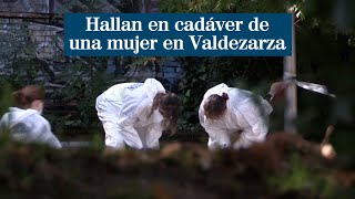 Hallan el cadáver de una mujer oculto detrás de unos setos en el barrio de Valdezarza