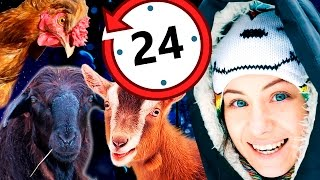 Провела НОЧЬ с животными! 24 ЧАСА ЧЕЛЛЕНДЖ! ПРАНК? Животные Magic Family