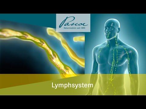 Symptome und Behandlung von degenerativen Bandscheibenerkrankungen der Halswirbelsäule